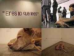 Vargas_vie_de_chien
