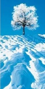 hiver_equilibre_vie_prive_vie_professionnelle