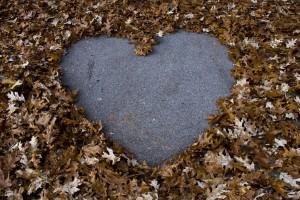 Amoureux_de_la_vie